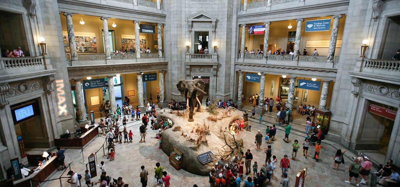 Smithsonian Museum Washington DC